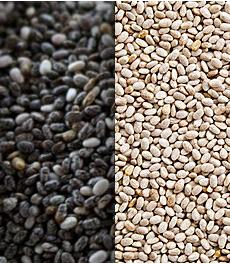 Semilla de chia blanca y negra - black and white chia seed
